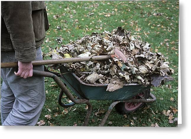 Gardener Pushing A Wheelbarrow Greeting Card