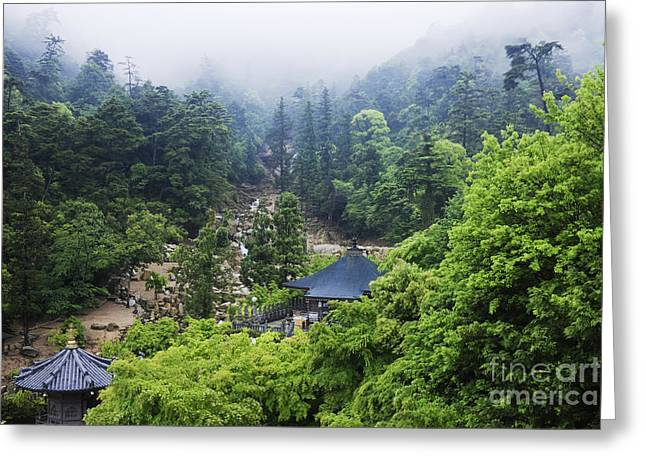 Gardens At A Mountain Shinto Temple Greeting Card by Jeremy Woodhouse