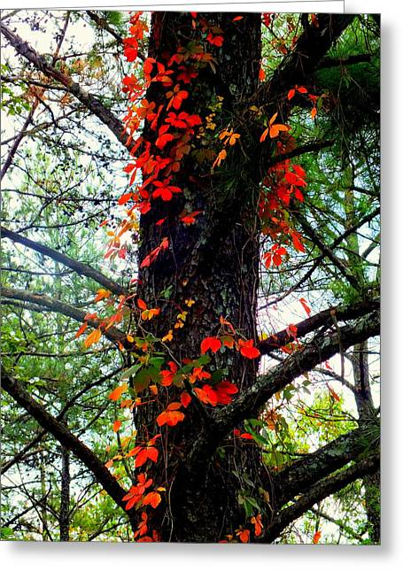 Garland Of Autumn Greeting Card by Karen Wiles