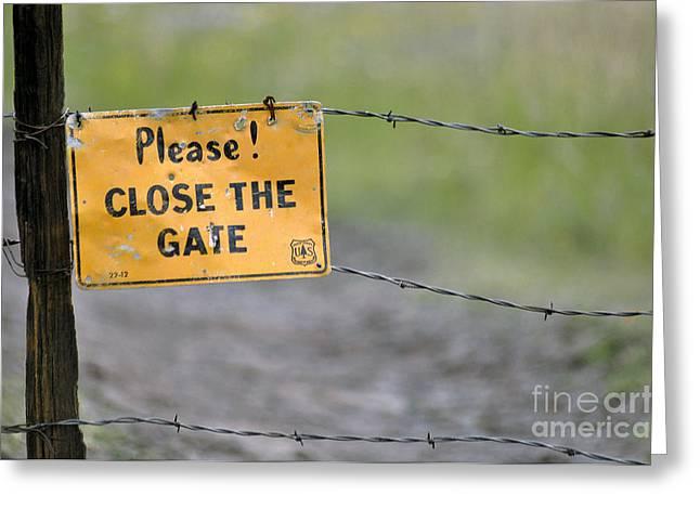 Gate Keeper Greeting Card by Juls Adams