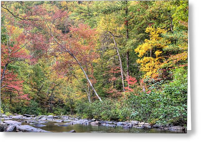 Gateway To Fall Greeting Card by JC Findley