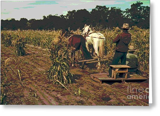 Gathering Corn In The Field Greeting Card