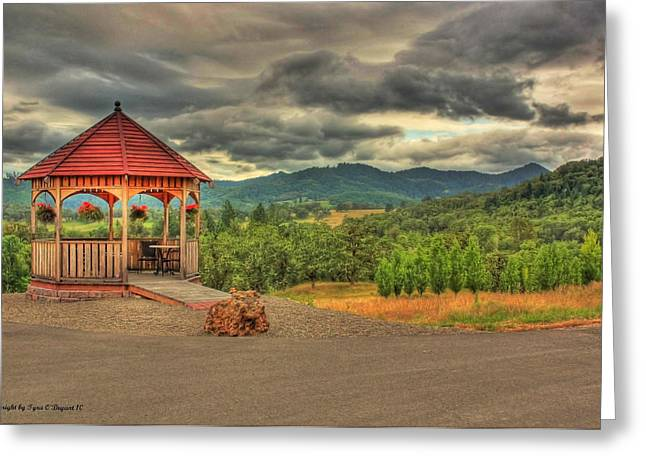 Greeting Card featuring the photograph Gazebo In The Storm by Tyra  OBryant