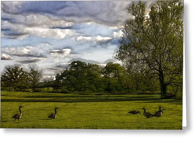 Geese On Painted Green 2 Greeting Card by Bill Tiepelman