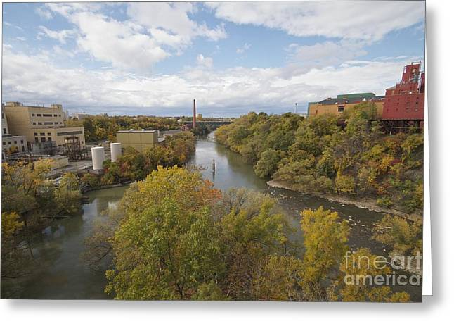 Greeting Card featuring the photograph Genesee River by William Norton