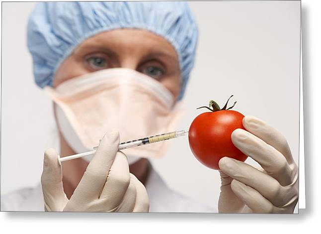 Genetically Engineered Tomato Greeting Card by Mark Sykes