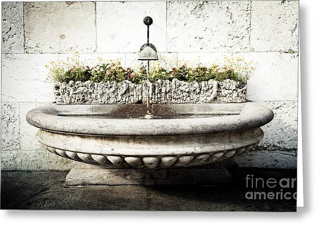 Geneva Fountain 2 Greeting Card