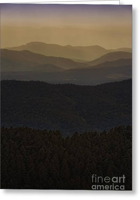 Greeting Card featuring the photograph Gentle Tones To Girona by Jack Torcello