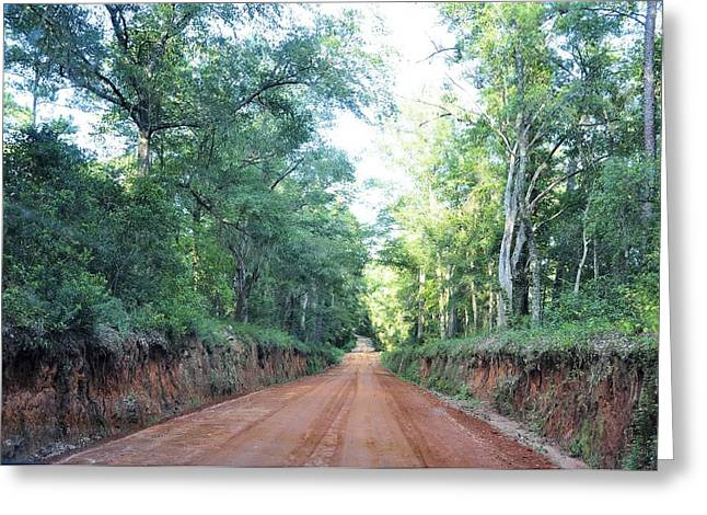 Georgia Clay Road Greeting Card by Jan Amiss Photography