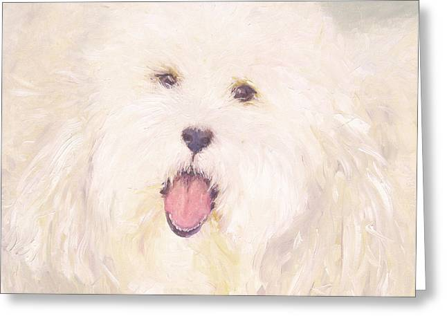 Georgie Greeting Card by Barbara Anna Knauf