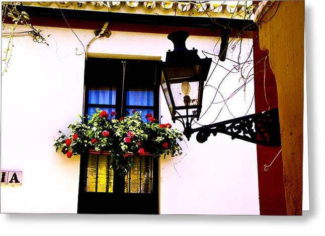 Greeting Card featuring the photograph Geraniums And Light by Rick Bragan