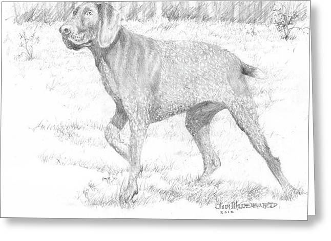 Greeting Card featuring the drawing German Shorthaired Pointer by Jim Hubbard