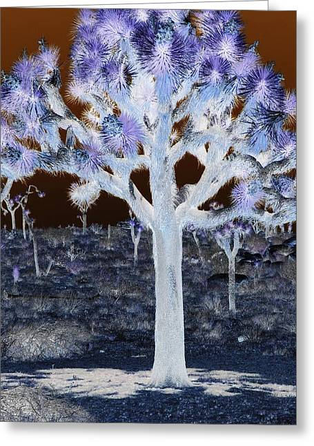 Ghostly Joshua Tree Greeting Card by Claire Plowman