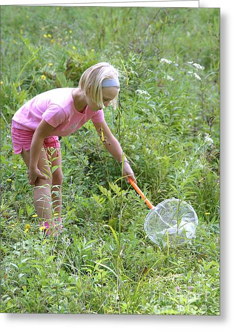 Girl Collects Insects In A Meadow Greeting Card by Ted Kinsman