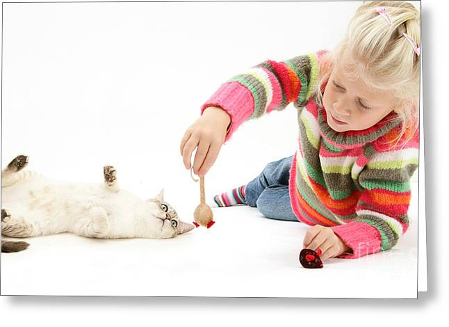 Girl Playing With Cat Greeting Card by Mark Taylor