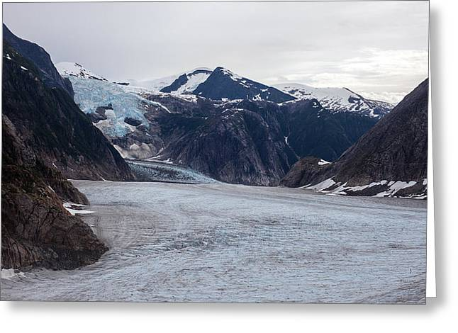 Glacial Field Greeting Card by Mike Reid