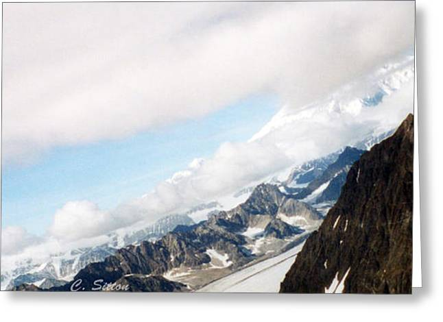 Glacier Flight Greeting Card