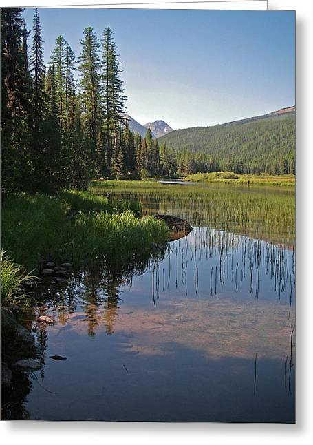 Glacier Slough Swan River Montana Greeting Card