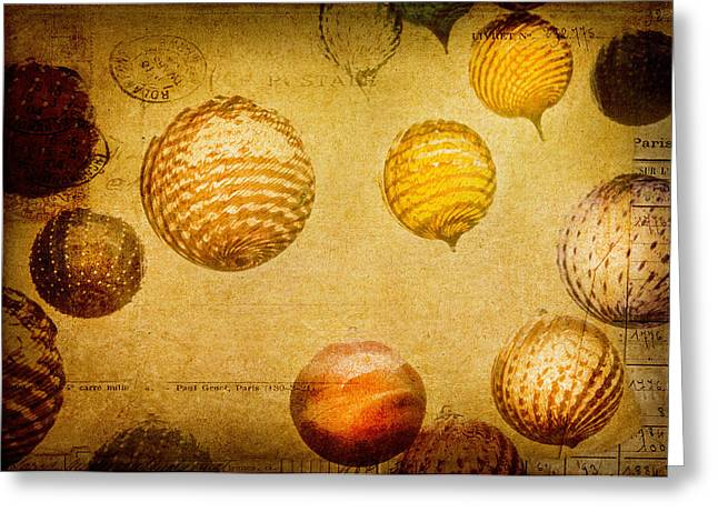 Glass Ornaments Greeting Card by James Bethanis