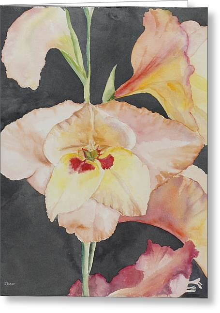 Glory Glads Greeting Card by Judy Loper