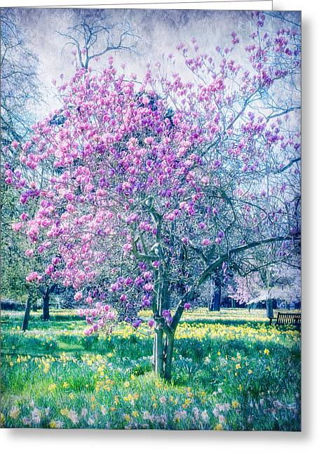 Glossed With Summer Sheen Greeting Card by Laura George