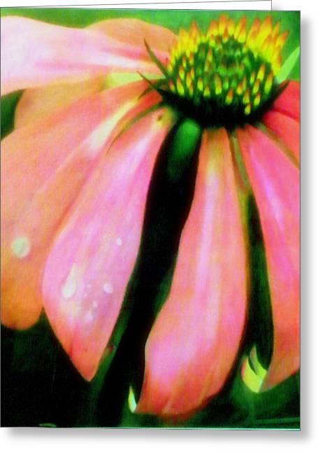 Glow Greeting Card by Amity Traylor