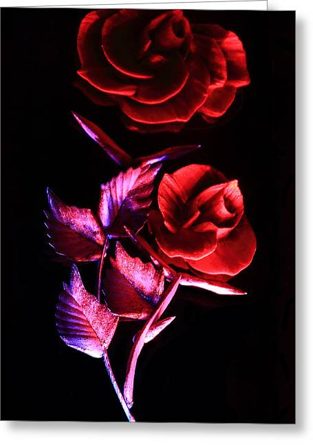 Glowing Glass Rose Photograph By Shane Bechler