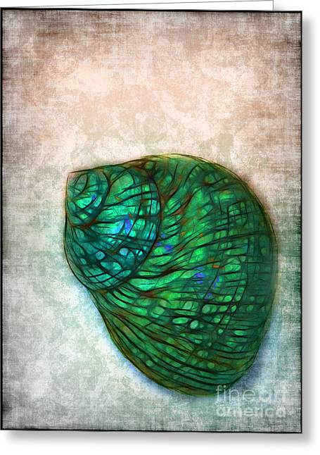 Glowing Seashell Greeting Card by Judi Bagwell