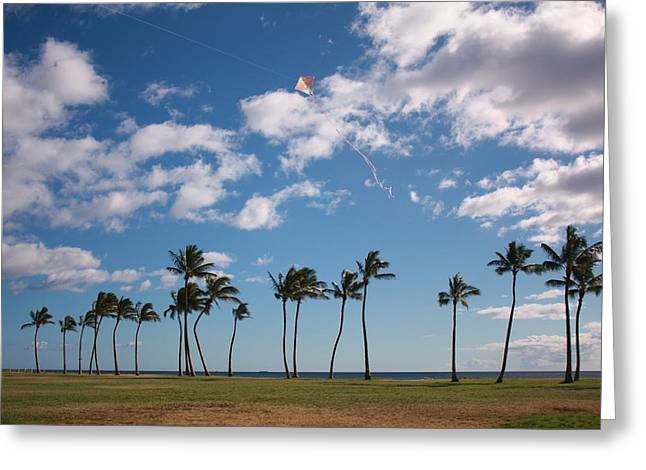 Greeting Card featuring the photograph Go Fly A Kite by Craig Wood