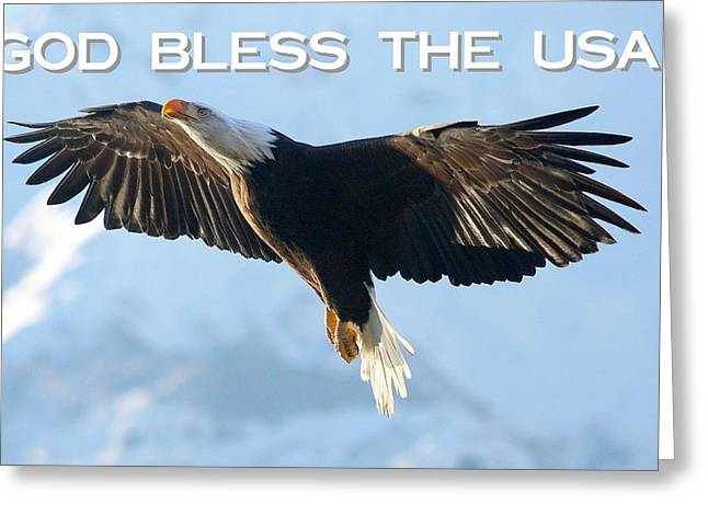 God Bless The Usa 2 Greeting Card by Carrie OBrien Sibley
