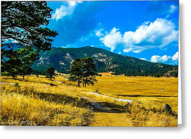 Greeting Card featuring the photograph God's Country by Shannon Harrington