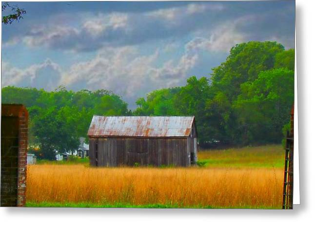 Gods Country Greeting Card by Trish Clark