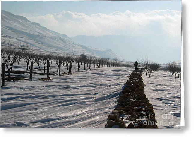 Going To Nowhere  Greeting Card by Issam Hajjar