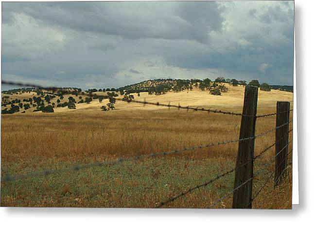 Gold Country Greeting Card