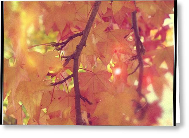 Gold Leaves Greeting Card by Lee Yang