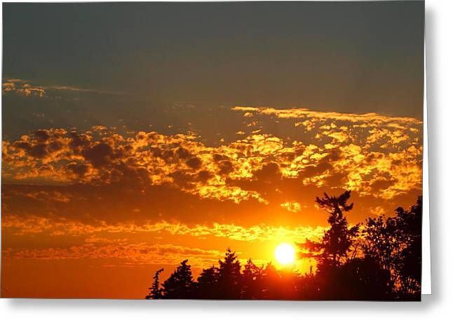 Gold Sunset Greeting Card by Jim Moore