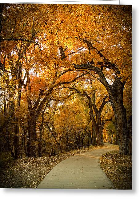 Golden Canopy Greeting Card by Lena Sandoval-Stockley