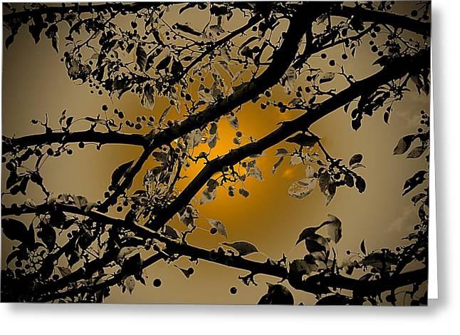 Golden Crabapple Greeting Card