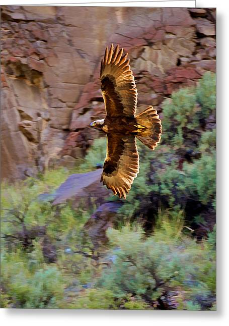 Greeting Card featuring the photograph Golden Flight  by Britt Runyon