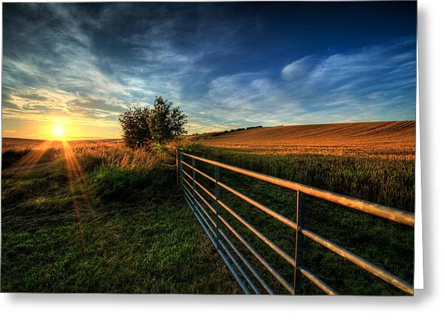 Golden Hour Greeting Card by Svetlana Sewell
