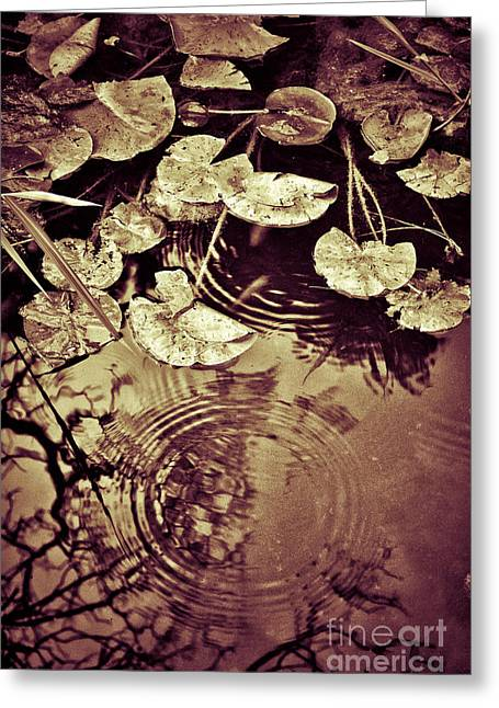 Golden Pond Greeting Card by Silvia Ganora