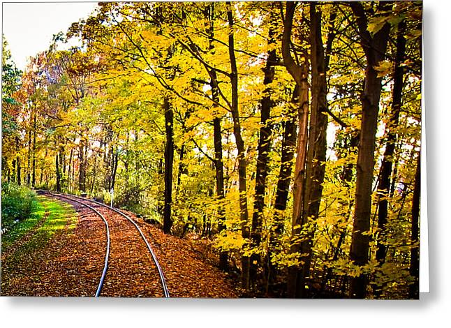 Greeting Card featuring the photograph Golden Rails by Sara Frank