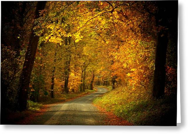 Golden Road Greeting Card by Joyce Kimble Smith