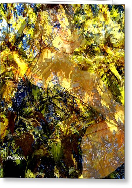 Golden Shadows Greeting Card by Seth Weaver