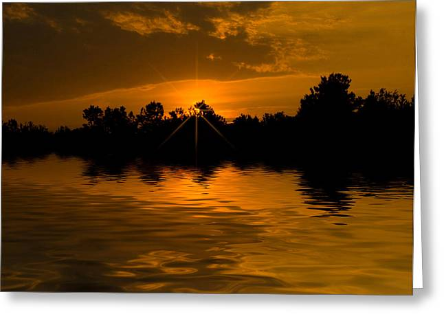 Golden Sunrise Greeting Card by Cindy Haggerty