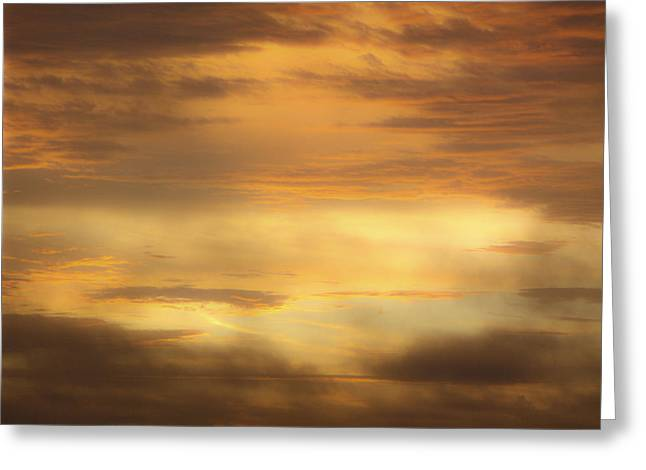 Golden Sunrise Squared Greeting Card by Teresa Mucha