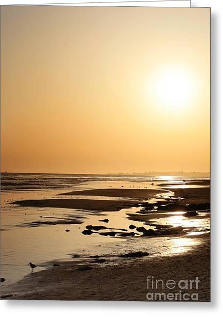 Golden Sunset- California Coast Greeting Card by Danuta Bennett