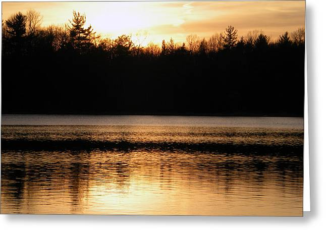 Greeting Card featuring the photograph Golden Sunset by Penny Hunt