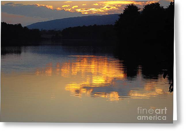 Greeting Card featuring the photograph Golden Sunset by Vilas Malankar