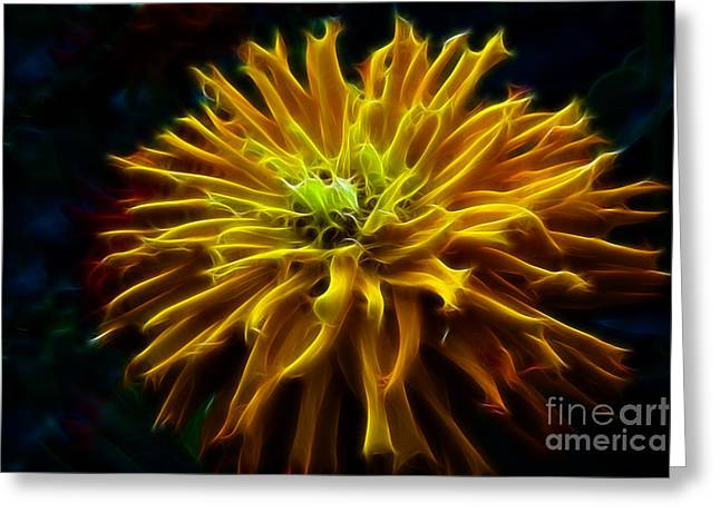 Golden Zinnia Glow Greeting Card by Darleen Stry